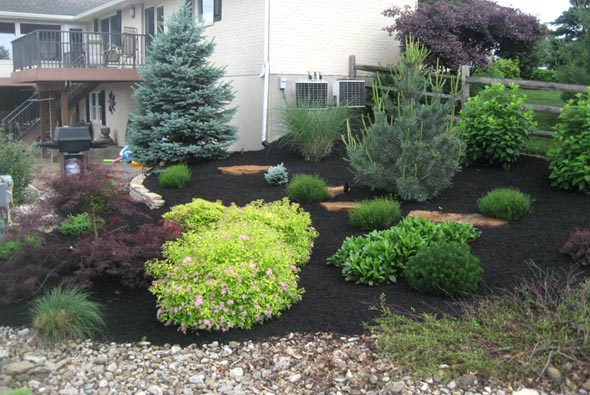 landscaping-backyard