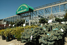 spotlight-greenhouse-sign